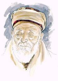 Essay about shahid afridi
