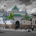 260 The Grand mosque (Paris, France)