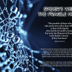 Picture Perfect : Quran & Modern Science – Spider's Web