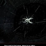 "The Quran and the Miracle of the Spider : ""… if they but knew."""